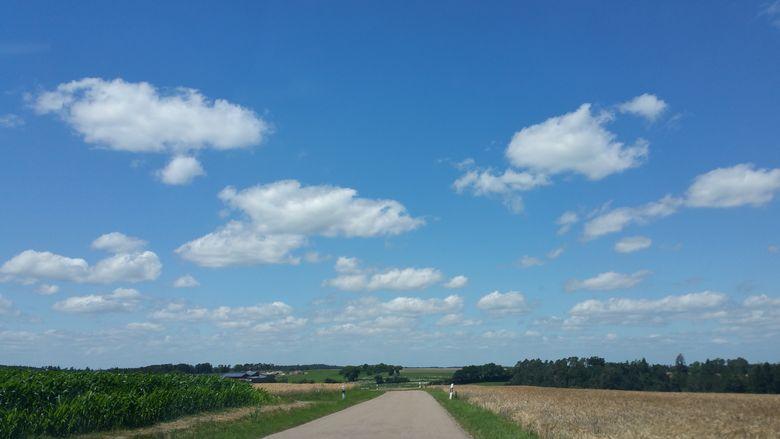 Blauer Himmel mit Wölkchen über Getreidefeldern